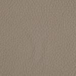 Taupe 441